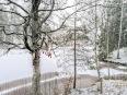 taidepolku talvella