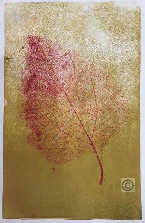 Punainen lehti-web, Read leaf